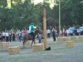 Giostra 2011 (99)