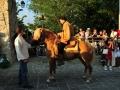 La Leggenda Del Drago 2010 (44)