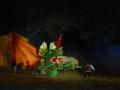 La Leggenda Del Drago 2010 (474)