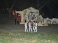 La Leggenda Del Drago 2010 (89)