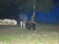 La Leggenda Del Drago 2010 (90)