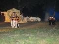 La Leggenda Del Drago 2010 (92)