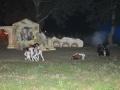 La Leggenda Del Drago 2010 (93)