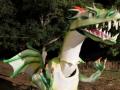 leggenda-del-drago-13-085
